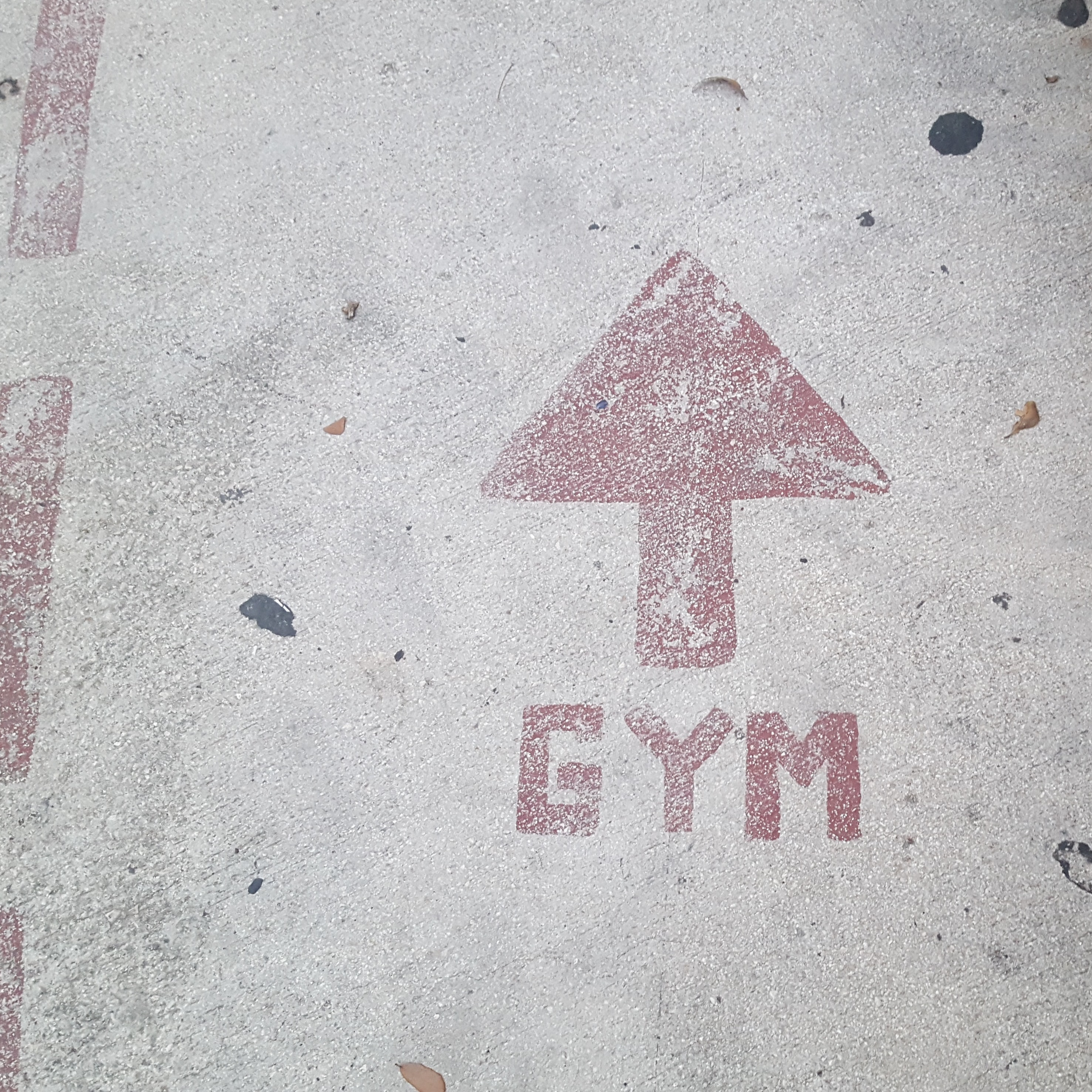 Gym Arrow